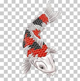 Fish Japanese Tattoo PNG