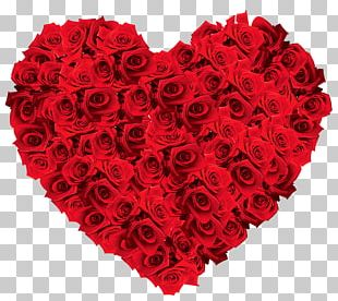 Rose Flower Stock Photography Valentines Day Heart PNG
