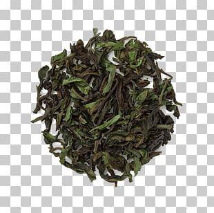 Earl Grey Tea Hōjicha Assam Tea Green Tea PNG