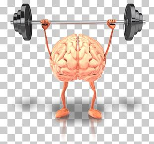 Brain Health Fish Oil Physical Exercise Human Body PNG