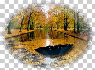 Nature Autumn Rain Yandex Water Resources PNG