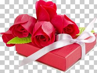 Valentines Day 2018 Greeting Card Love PNG