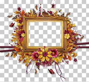 Frames Floral Design Leaf PNG