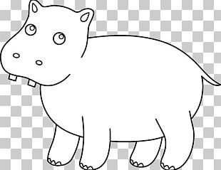 Hippopotamus Coloring Book Whiskers Child PNG