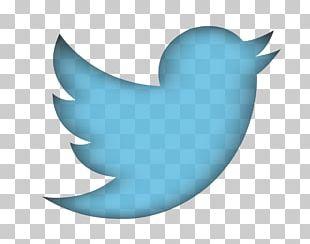 Twitter Transparent PNG