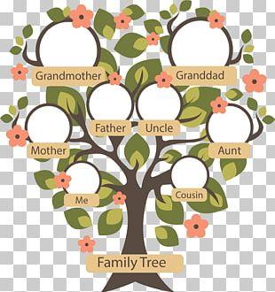 Family Tree Genealogy Ancestor PNG