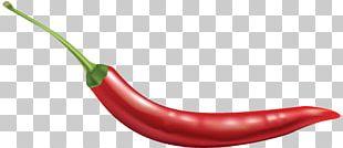 Bell Pepper Cayenne Pepper Chili Con Carne Chili Pepper Facing Heaven Pepper PNG