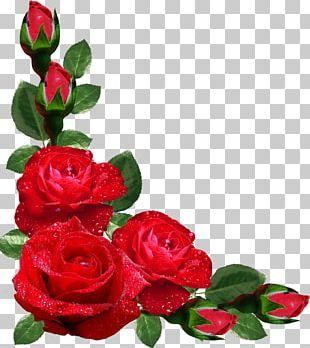 Flower Rose Frames Japanese Border Designs PNG