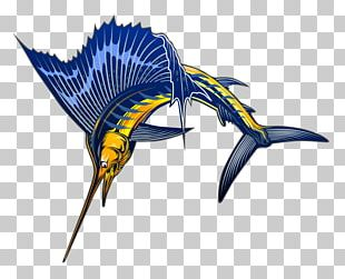 Sailfish Atlantic Blue Marlin PNG