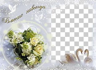 Wedding Photography PNG