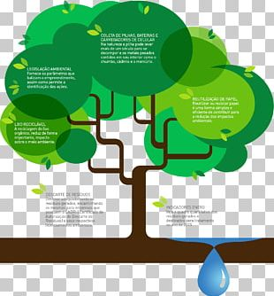 Infographic Ecology PNG