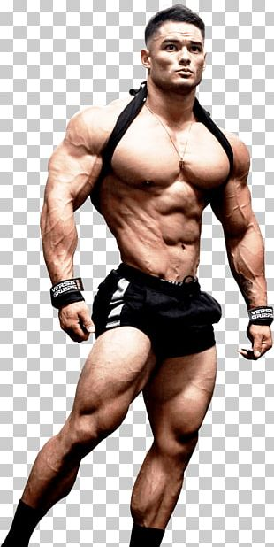 Jeremy Buendia Human Leg Physical Fitness Bodybuilding Gluteus Maximus Muscle PNG