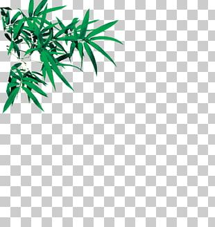 Bamboo Leaf Euclidean PNG