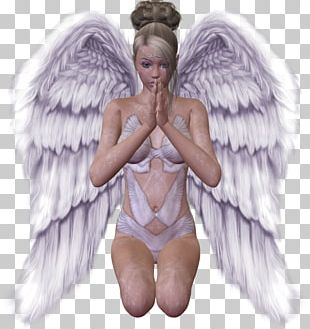 Guardian Angel Wing PNG