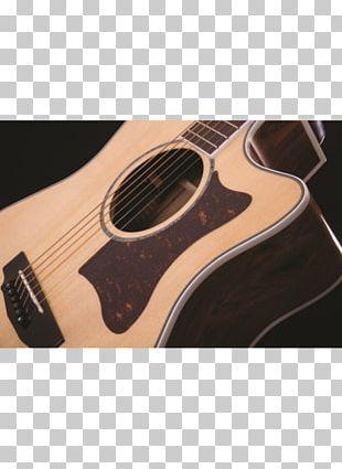 Acoustic Guitar Bass Guitar Cort Guitars Acoustic-electric Guitar PNG