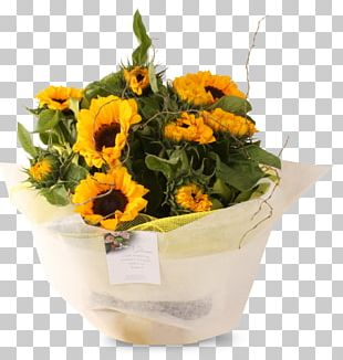 Floral Design Flower Bouquet Cut Flowers Common Sunflower PNG