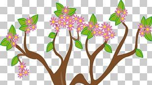 Fall Tree Illustration Spring PNG