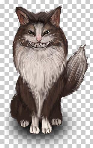 Whiskers Norwegian Forest Cat Kitten Domestic Short-haired Cat Siberian Cat PNG