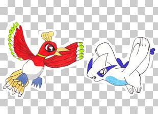 Duck Beak Bird Feather PNG