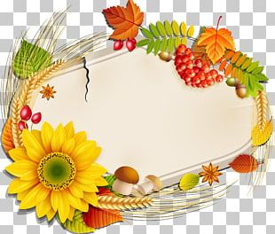 Autumn Harvest Material PNG