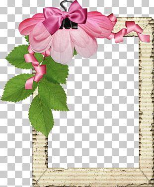 Pink Flower Border Frame PNG