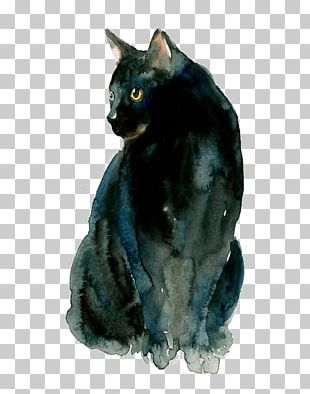Black Cat Siamese Cat Watercolor Painting Old Possum's Book Of Practical Cats Why Paint Cats PNG