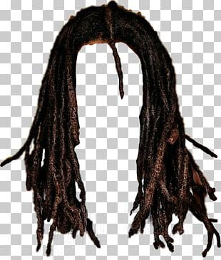 Mohawk Hairstyle Long Hair Dreadlocks PNG