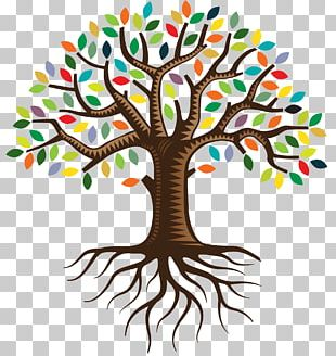 Root QC Family Tree Logo PNG