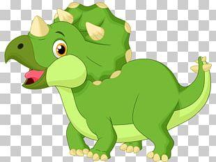 Triceratops Dinosaur Infant Tyrannosaurus PNG