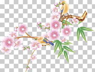 Floral Design Computer Icons Flower Petal PNG