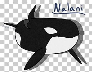 Dolphin Black Character Fish PNG
