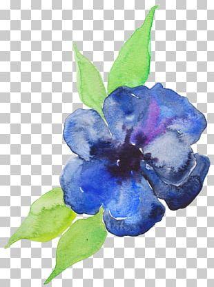 Blue Watercolor Painting Flower Violet Purple PNG