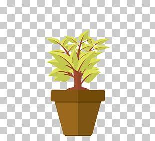 Flowerpot Leaf Houseplant Plant Stem Herb PNG
