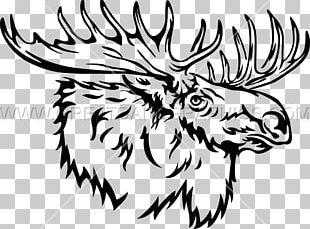 Moose Line Art Drawing Black And White PNG