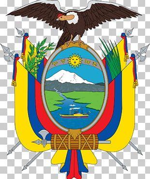 Flag Of Ecuador Coat Of Arms Of Ecuador National Symbols Of Ecuador PNG