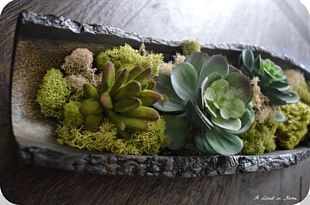 Leaf Vegetable Floral Design Floristry Herb PNG