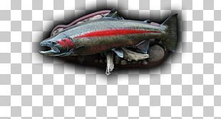 Sardine Fish Products 09777 Oily Fish Mackerel PNG