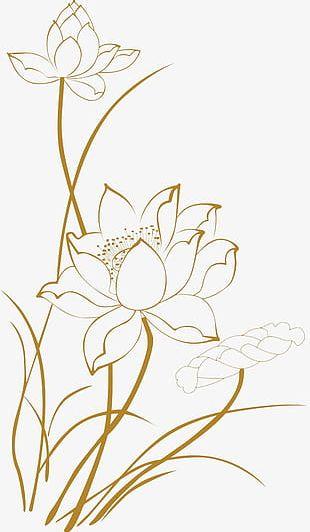 Lotus Line Drawings PNG
