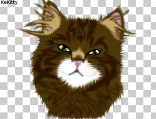 Whiskers Maine Coon Norwegian Forest Cat Wildcat Fur PNG