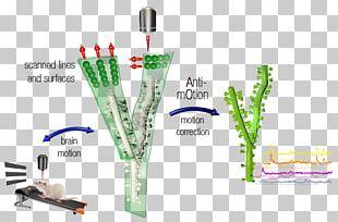 Microscope Two-photon Excitation Microscopy Femtonics PNG