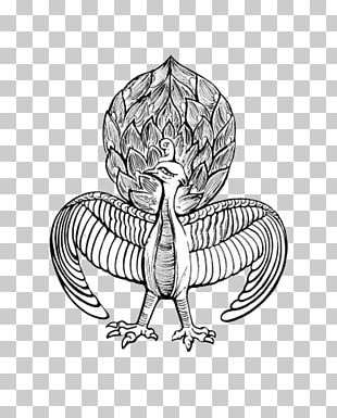 Fenghuang County Visual Arts Peafowl PNG