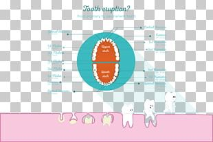 Pediatric Dentistry Permanent Teeth Deciduous Teeth Endodontic Therapy PNG
