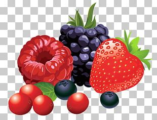 Berry Fruit PNG
