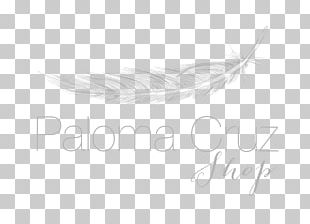 Feather White Quill Corp PNG