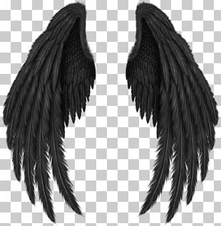 Ink Others Wings PNG