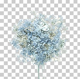 Gail's Floral Studio Flower Bouquet Baby's-breath Wedding PNG