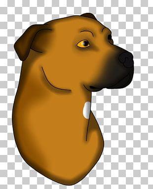 Labrador Retriever Puppy Dog Breed Sporting Group PNG