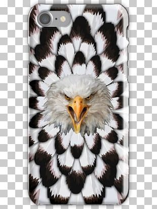 Eagle Hyena Leopard Lion Bird PNG