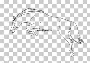 How To Draw A Mustang Horse PNG Images, How To Draw A