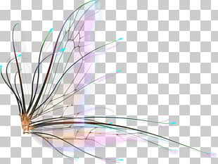 Butterfly Drawing Watercolor Painting Cartoon PNG